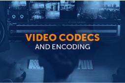 RealNetworks Media Codec Patent Portfolio